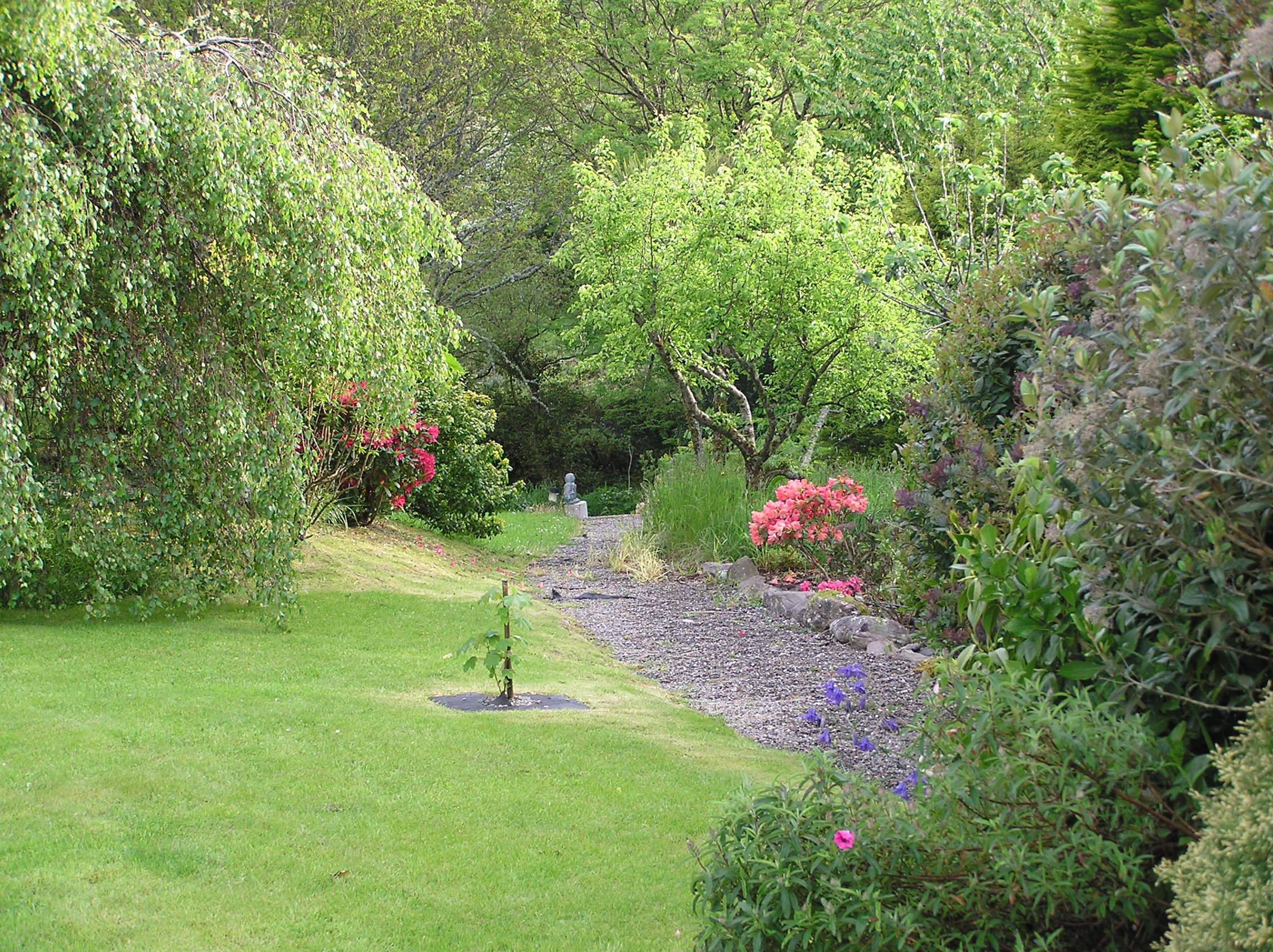 Our garden Spring.JPG